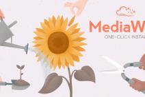mediawiki-large