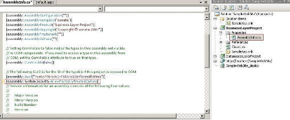 assemblyinfo-pic3